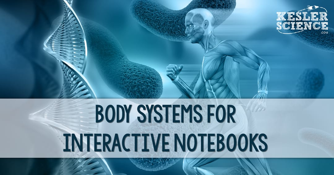 Body Systems For Interactive Notebooks Kesler Science