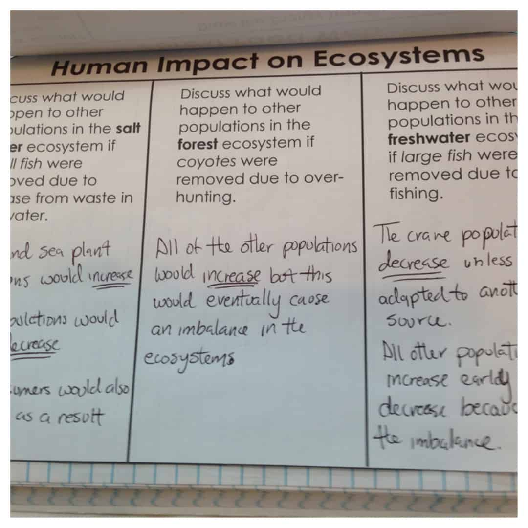 Various human activities and environmental effects research papers
