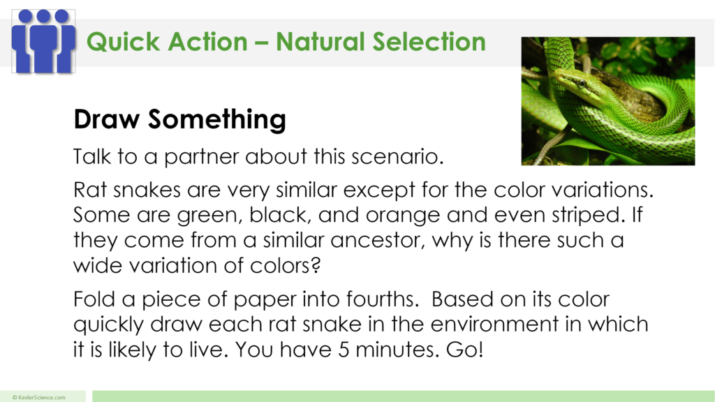 Natural Selection 5E Lesson