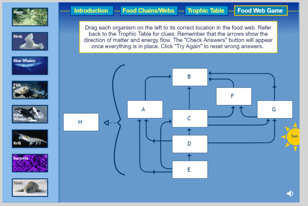 Food Webs 5E Lesson
