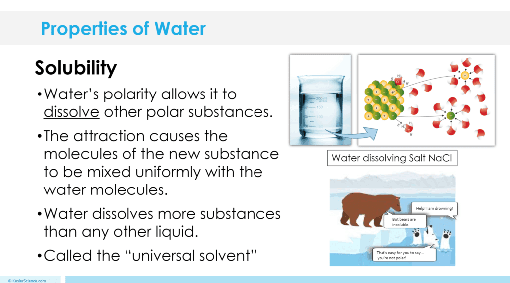 Properties of Water 5E Lesson
