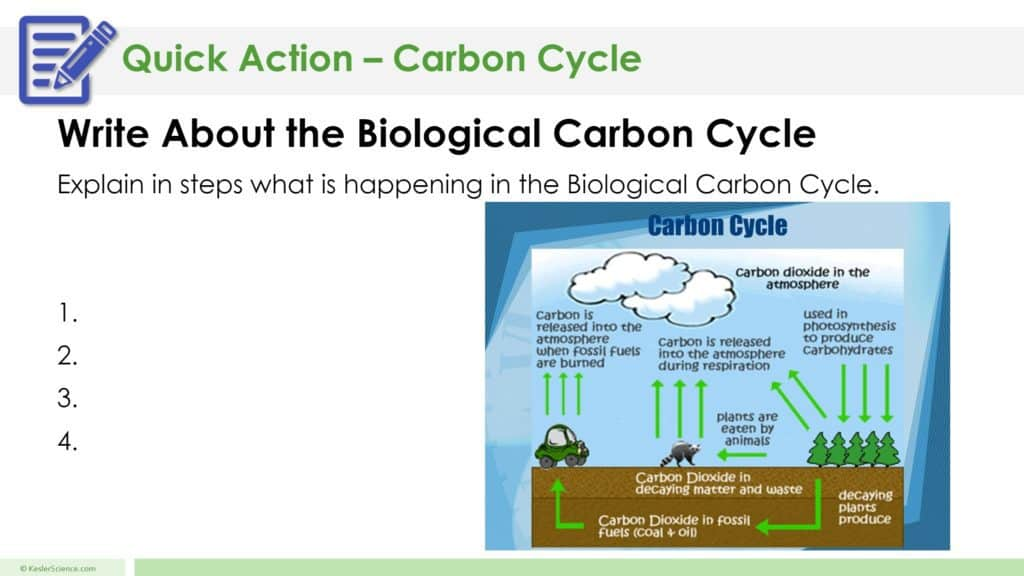 Carbon Cycle 5E Lesson