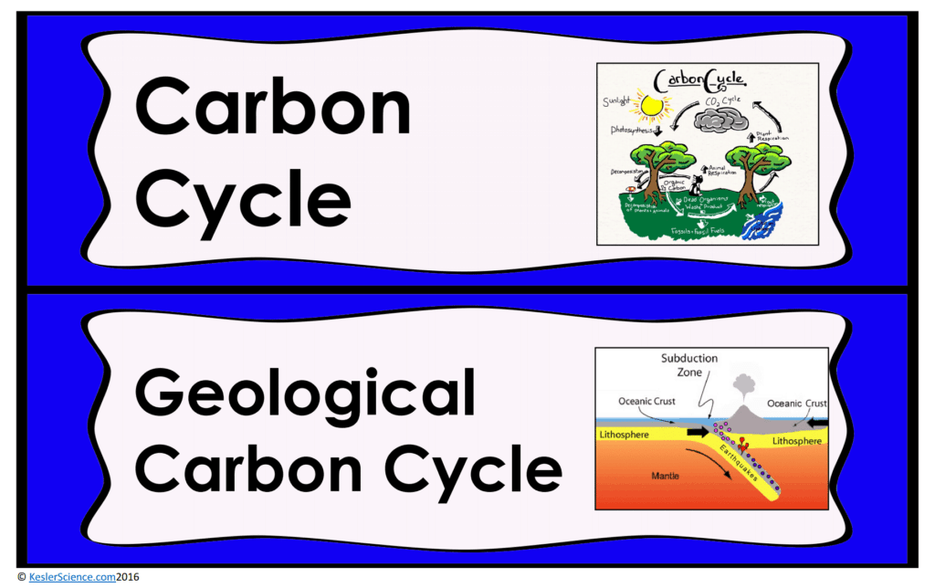 Carbon Cycle Lesson Plan A Complete Science Lesson Using The 5e